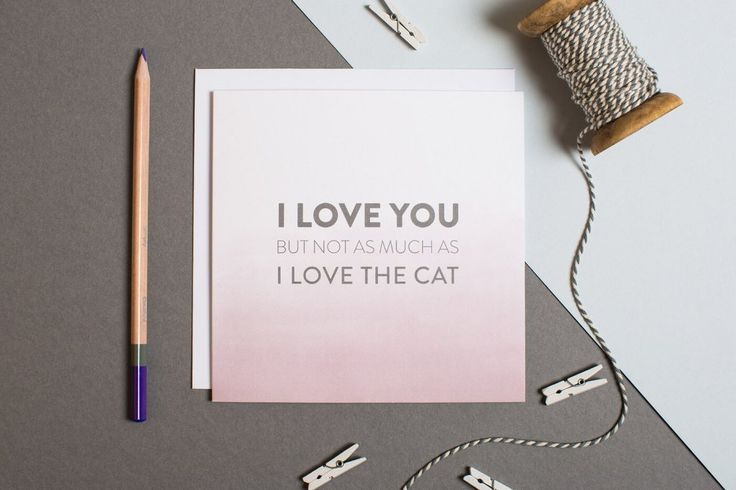 A hilariously blunt anniversary card for your other half that may or may not get you in to trouble! #jealousofthecat