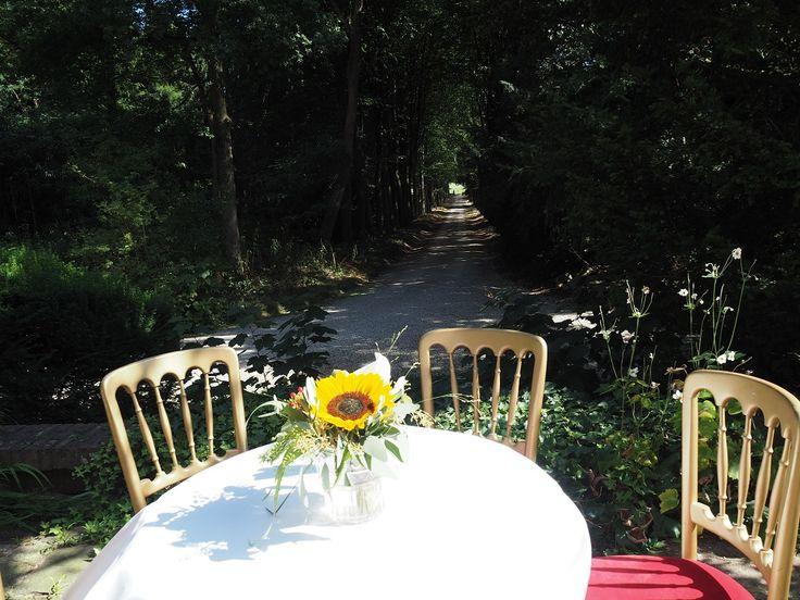 Landgoed Remmerstein is officieel trouwlocatie in de gemeente Rhenen. Van huwelijksceremonie tot receptie, diner en besloten feest. Contact voor meer informatie: verhuur@landgoedremmerstein.nl  www.landgoedremmerstein.nl    #trouwen #huwelijk #ceremonie #wedding #rhenen #feest #inzegening #trouwreportage