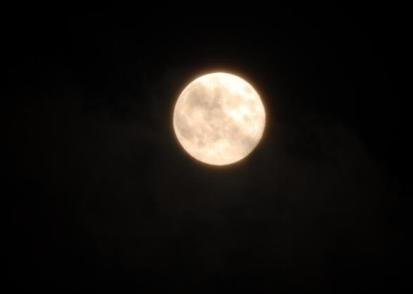 La Luna gigante nella foto scattata da #Marassi #Genova, da Myriam.