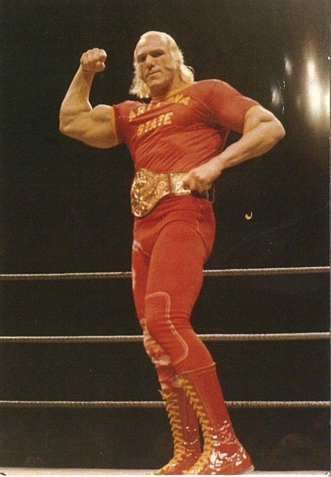 Superstar Billy Graham | Old School Bodybuilding ...