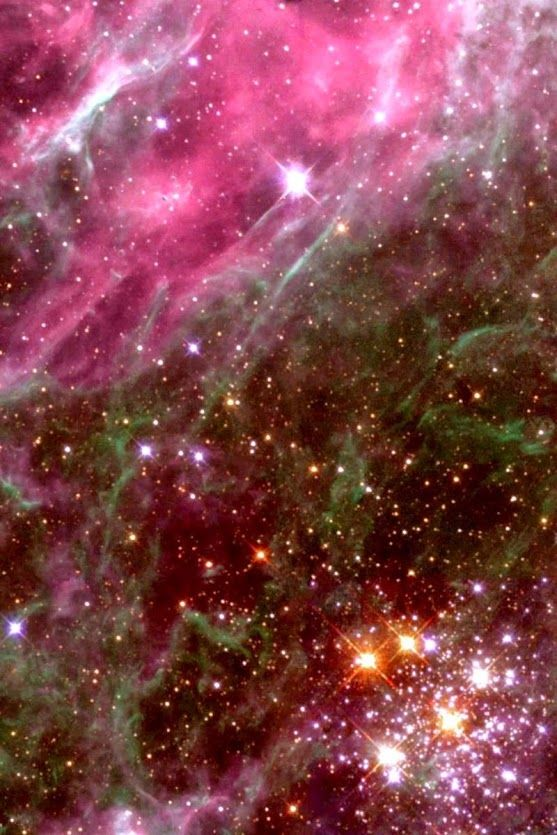 Hodge 301 Hodge 301 is a star cluster located in the Tarantula Nebula about 168,000 light years away in the Large Magellanic Cloud Galaxy. The Tarantula Nebula is a star forming region, fueled by the star clusters hidden inside.