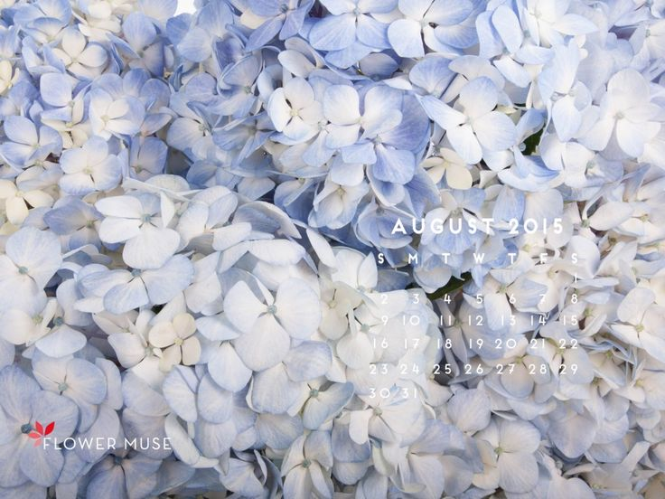 August 2015 Calendar - download for free on Flower Muse Blog: http://www.flowermuse.com/blog/august-2015-calendar/