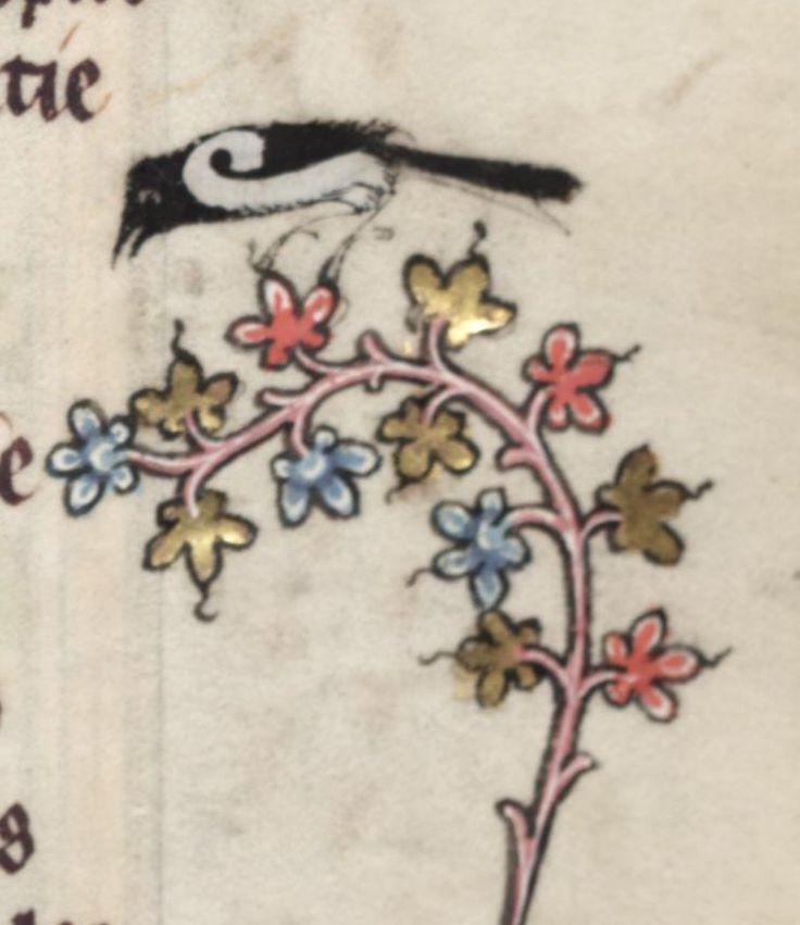 Medieval bird on fłowers . Illuminated manuscript. .