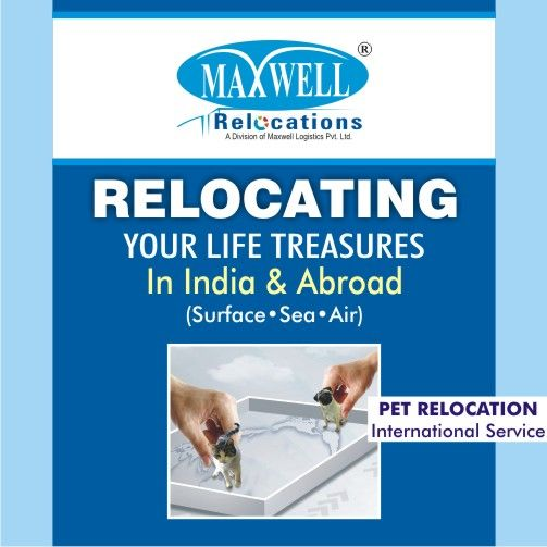 You do not need to worry on any ground for the safety and convenience of your pet while moving to the new address. To keep your cat/dog protected against every kind of problem, experts of Maxwell Relocations try every bit keeping every measure in mind.  #petrelocation #petshiftingservices #maxwellrelocations