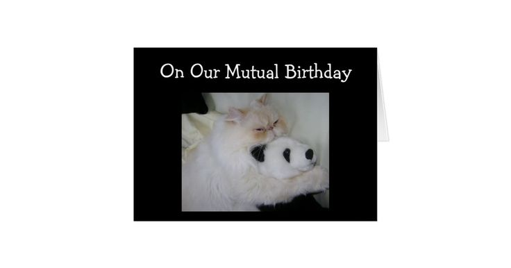 ON OUR MUTUAL BIRTHDAY HUMOR CARD | Zazzle