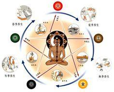 Čínská medicína vám poradí, jak detoxikovat životně důležité orgány--china radio international