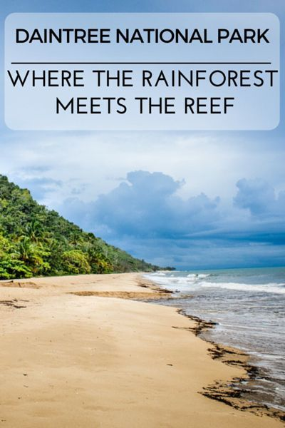 Daintree National Park, located in Far North Queensland is the only places in Australia where the Great Barrier Reef meets the Rainforest.