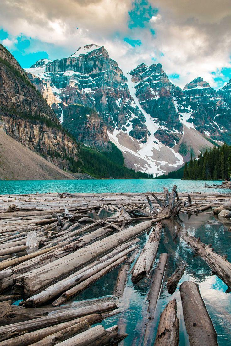 Driftwood gathering in Lake Moraine Alberta Canada. [OC] [3265x4898]