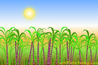13 april 2017 - Mesha Sankranti is also known as Maha Vishuva Sankranti. According to Vedic astrology on this day the Sun enters Mesha Rashi or Aries Zodiac. This day marks the beginning of the New Year in most Hindu Solar Calendars.