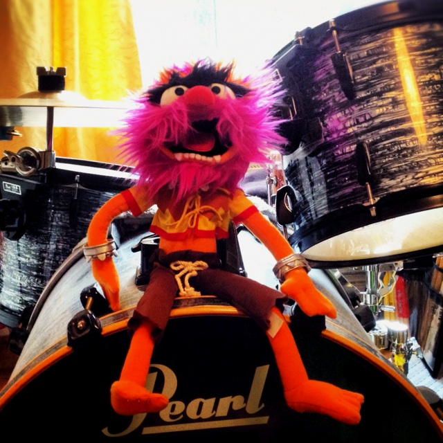 Animal on the drums.
