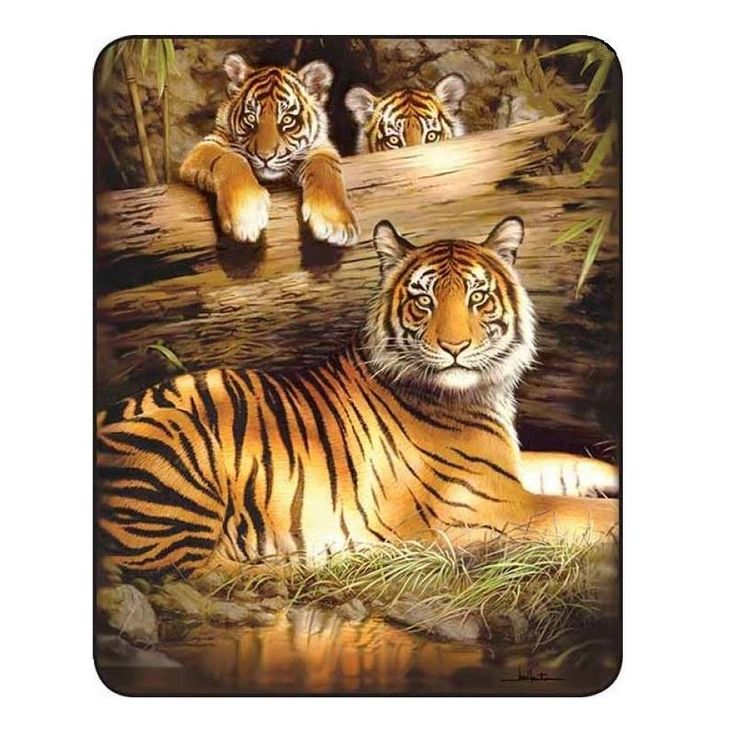 38 Best Tiger Gifts & Home Decor Images On Pinterest