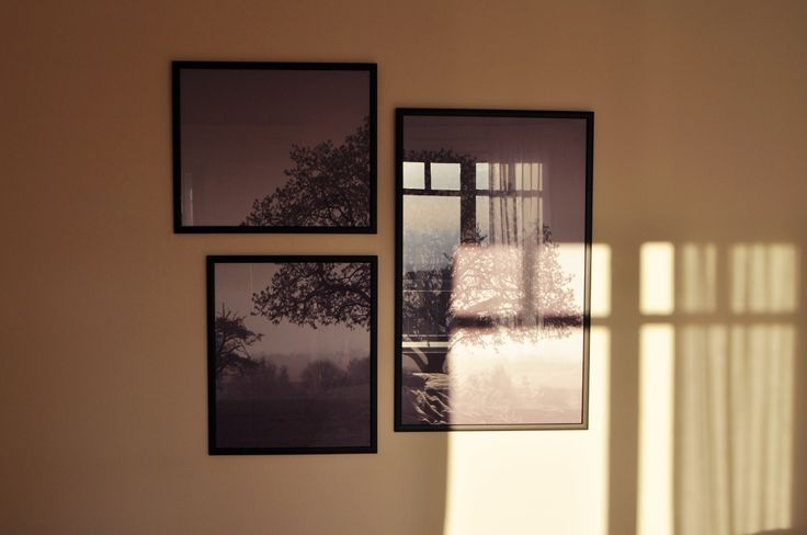 My Interior Details ~ Play with the Sunlight 🌅 #frames #beyonddecoration #elenaarsenoglou #tree #blackandwhite #photography #sunlight #wallart #decoration