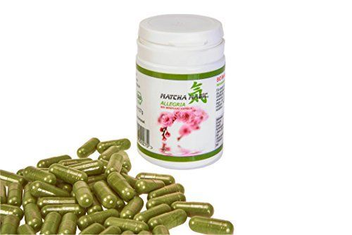 MatchaMagic Allegria Bio Benifuuki 60 Kapseln, 1er Pack (1 x 24 g)
