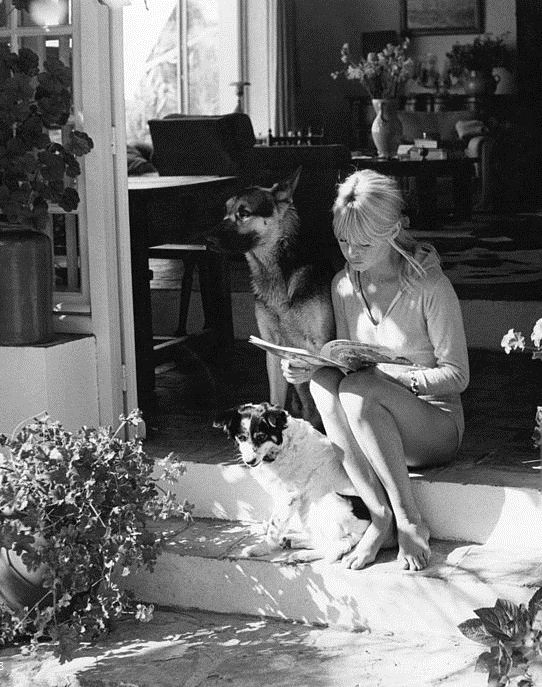 Brigitte Bardot and her dogs Kapi and Guapa at La Madrague, 1965. Photo by Ghislain Dussart.