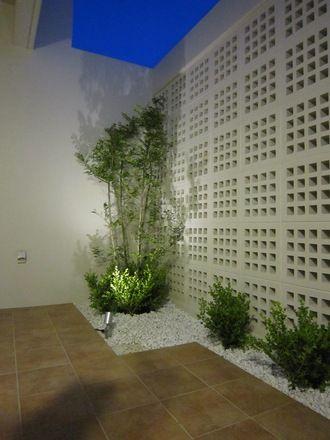 HADANA 葉棚の葉っぱのはなしはじめます。:花ブロックとシマトネリコ。