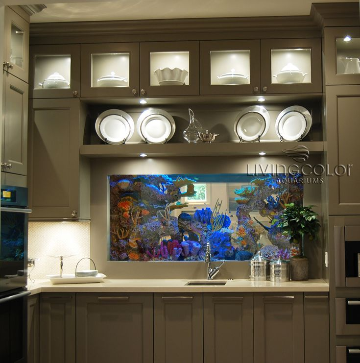 Home aquarium in the kitchen I would always want to wash the dishes!