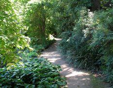 Ian Potter children's garden @ botanic gardens (tram down St Kilda Rd to Shrine of Remembrance stop)