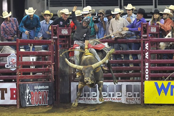 Grab life by the horns.