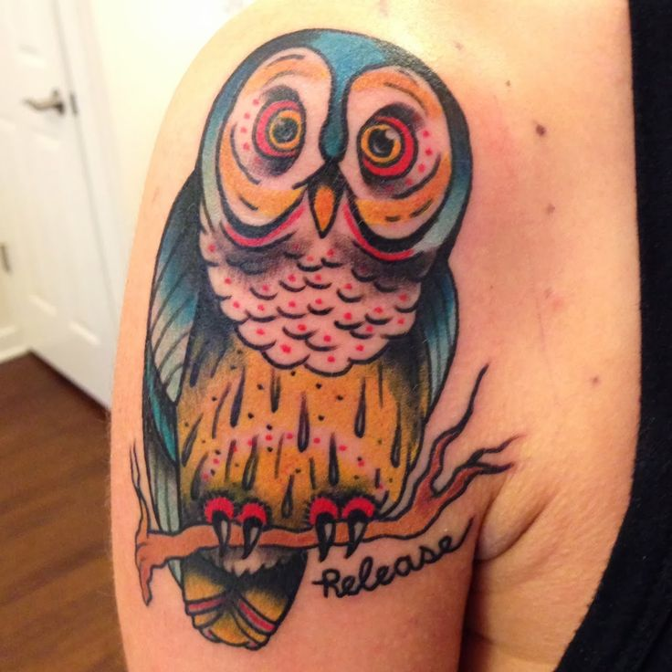 30 best money owl tattoo images on pinterest tattoo for Best tattoos ever done