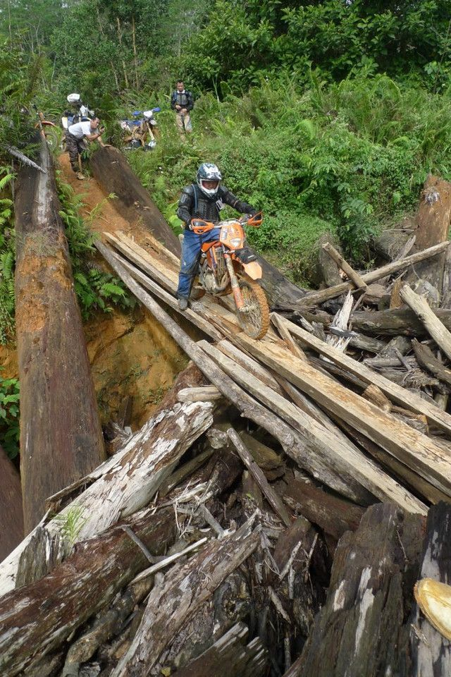 Borneo Equator Expedition - Jungle , Swamps and Heatstroke   5 bikes , some 4WD's and 2500 km of Kalimantan wilderness along the Equator.
