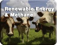 Renewable Energy   Definitely a Good Idea ~