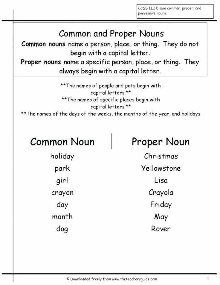 Plurals worksheet 3rd grade plural possessive nouns