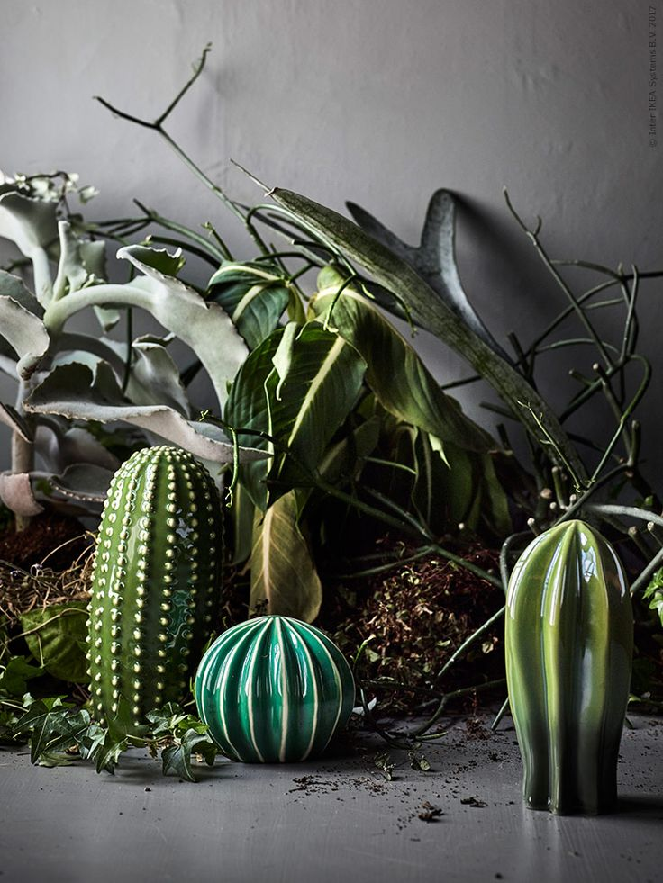 SJÄLSLIGT dekoration kaktusar varken sticks eller behöver vatten.