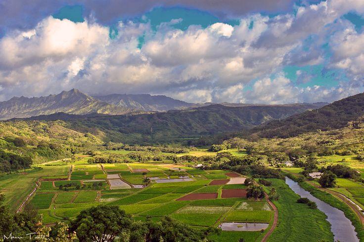 https://flic.kr/p/byFqKs | Kauai Island -  Hawaii