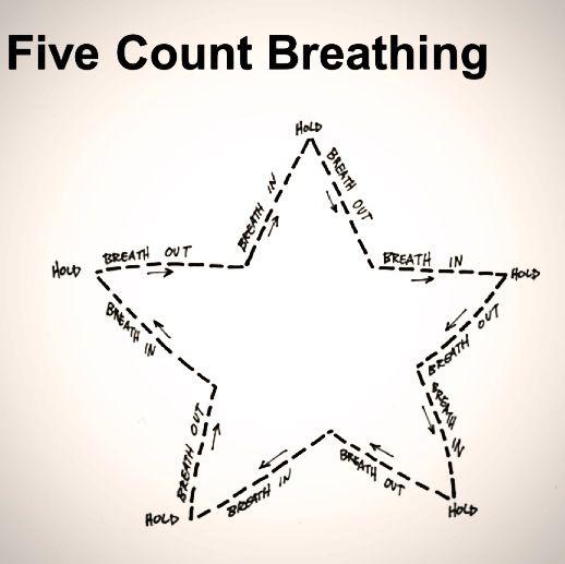 Anatomy Of Breathing - csjonline.org