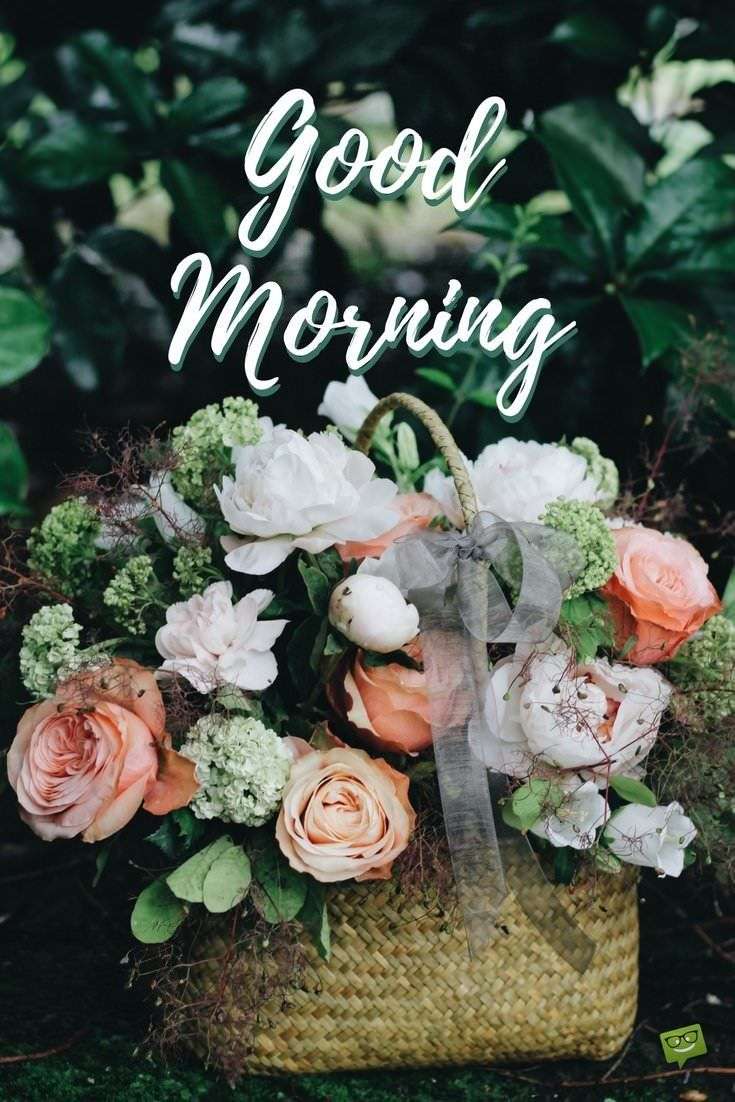 Fresh Inspirational Good Morning Quotes For The Day Get On The Right Track Part 4 Good Morning Picture Flowers Good Morning Inspirational Quotes