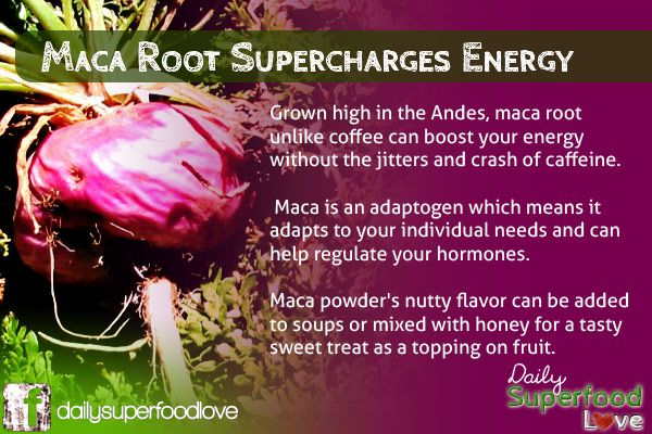 Maca for Women: What are the Benefits? For women, the advantages of normal Maca root consumption are substantial. Maca has advantages for both men and women, however in this article we will highlight specifically how it will boost the feminine qualities of life. Below we list 7 important advantages of Maca for women that are …