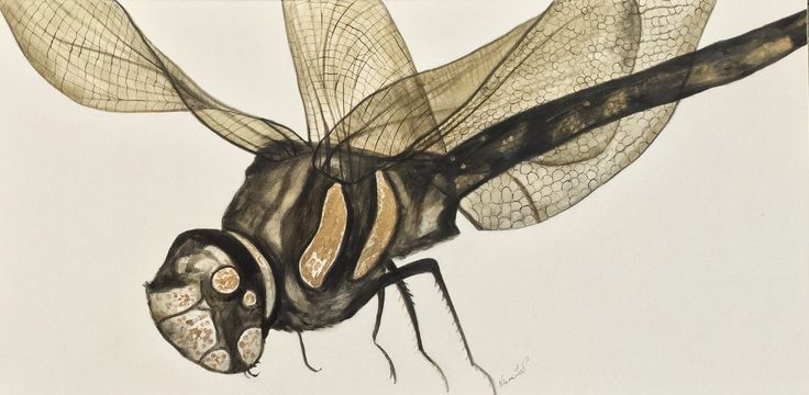 View Dragonflying-bye by Niwan YOD. Browse more art for sale at great prices. New art added daily. Buy original art direct from international artists. Shop now