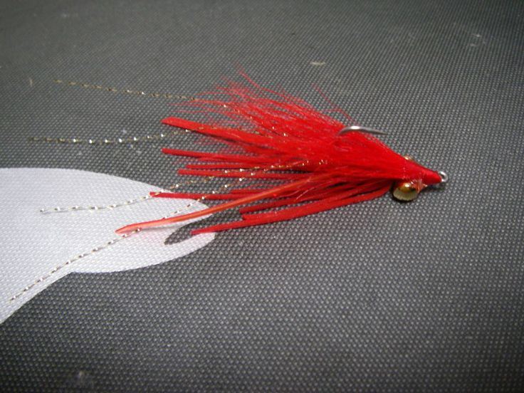 39 best surf perch flies images on pinterest surf for Surf fly fishing