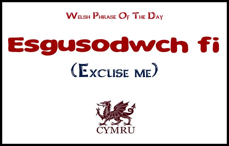 Welsh phrase of the day:  Excuse me.