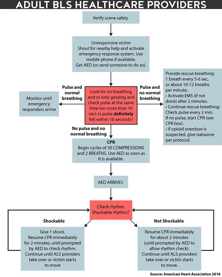 CCMA Training Materials & CCMA Study Guide & CCMA Test ...