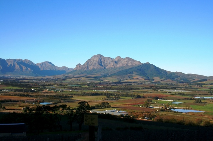Autumn view from the top of Fairview farm in Paarl