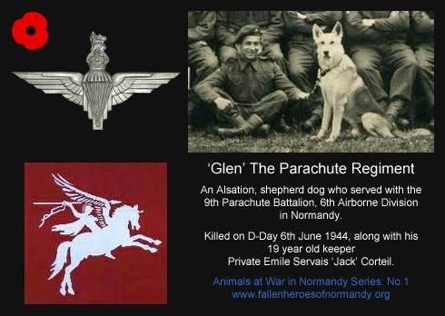 airborne hero d-day frontline 1944 wiki