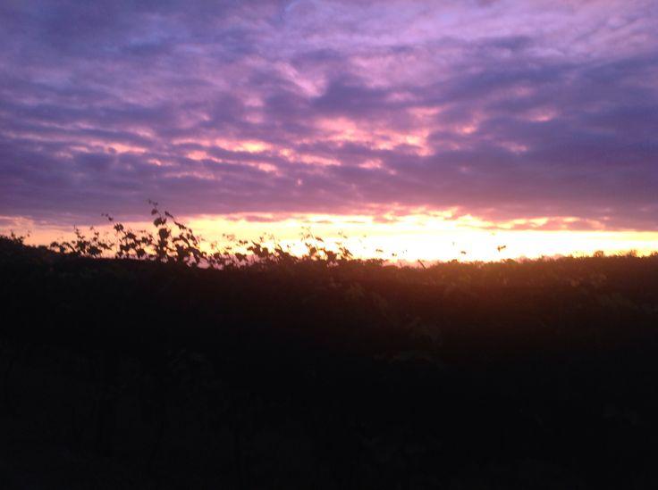 At Bago 5/1/2015 sunrise
