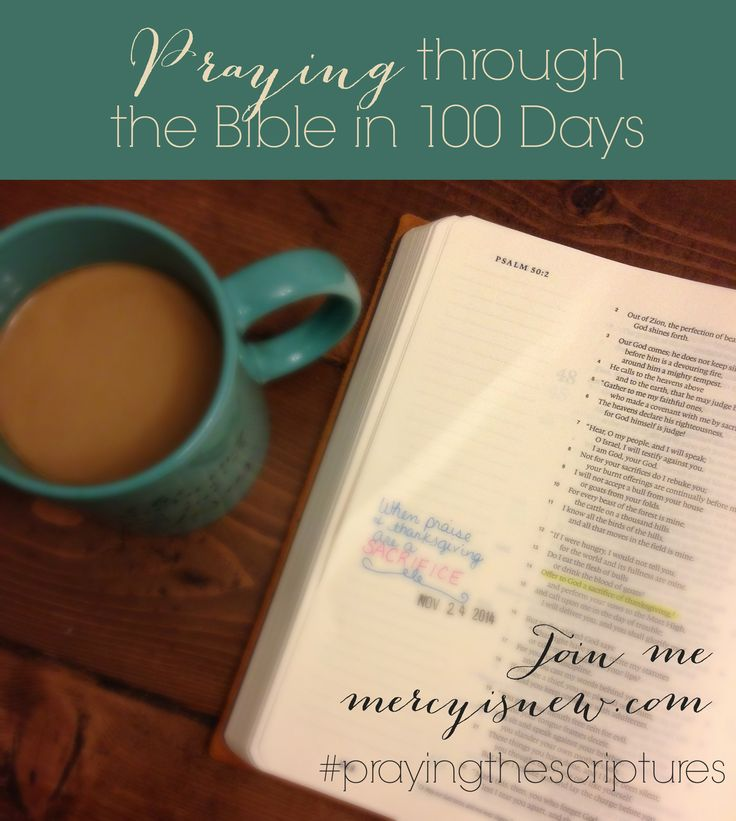 Pray (and READ) through the Bible in 100 Days! Printable Schedule and other info here! #prayingthescriptures #Biblein100days