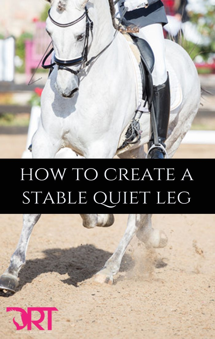 Learn how to create a stable and quiet leg for dressage