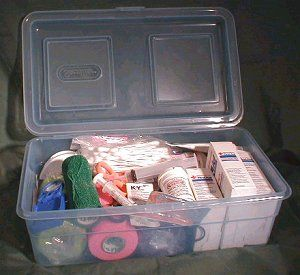 Emergency First Aid Kit for Reptiles: Because illness, injury or accidents can happen at any time to your reptilian pets, keeping an emergency first aid kit stocked and ready is crucial to being prepared for small injuries to life and death situations.  #petsitting #reptiles #petfirstaid