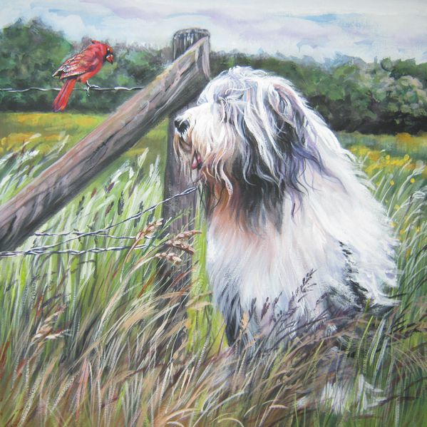 Bearded Collie with Cardinal by L.A.Shepard