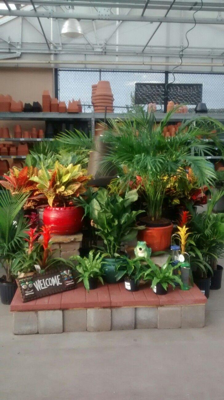 1000 images about garden retail displays on pinterest for Idea verde garden center