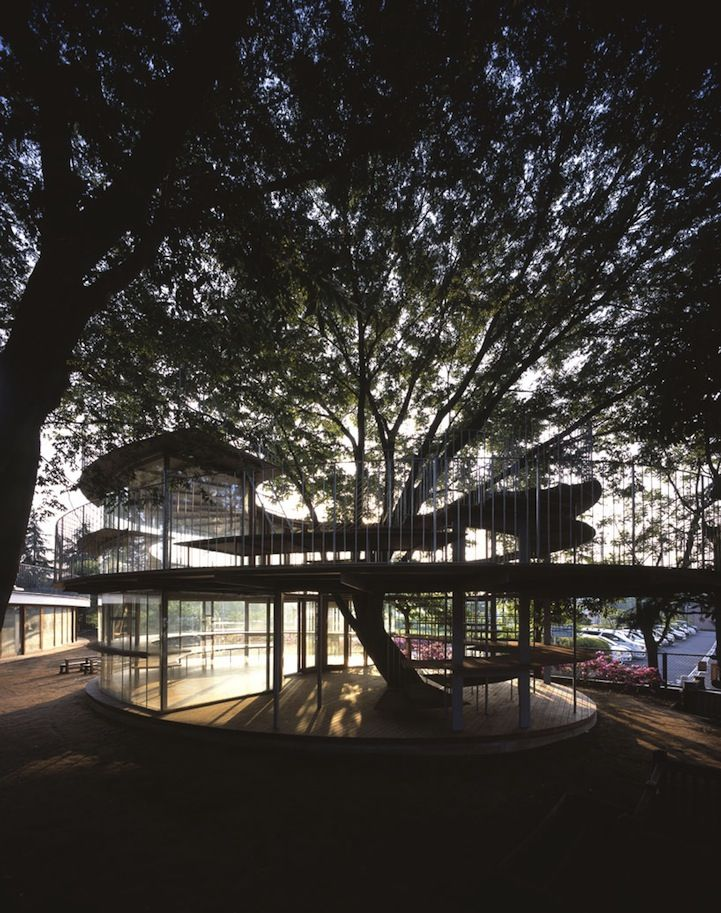 Kindergarten Centered Around a Legendary Tree