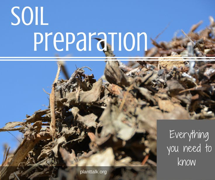 Prepare your soil for new seed or sod.