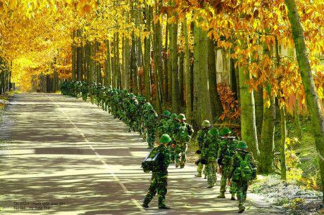 Quân đội nhân dân Việt Nam hành quân