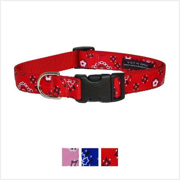 Purchase Sassy Canine Put on Bandana Canine Collar, Small at Chewy.com. FREE delivery and the…