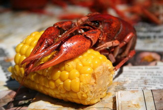 Where to Find the Best Boiled Crawfish in New Orleans