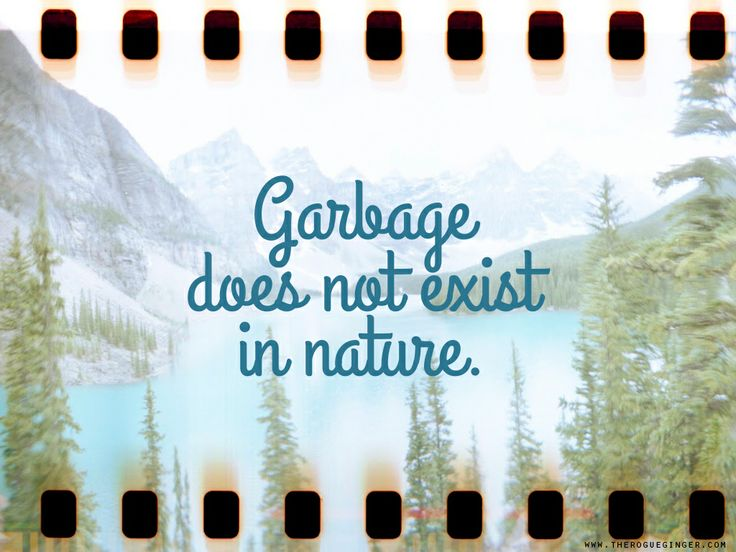 Free wallpaper download - Garbage does not exist in nature