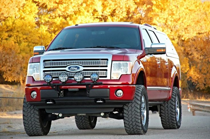 Desert Dawg's Custom 2011 Ford F150 Platinum SuperCrew 4X4